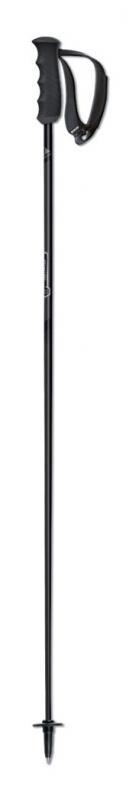 Fischer BRILLIANT CARBON 2018/19 - 110 cm